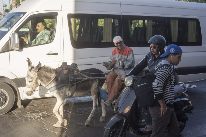 Street Photography in Marakesch - Der entscheidende Momument, um vier Männer und einen Esel zu fotografieren.
